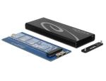 DeLOCK 42570 storage drive enclosure SSD enclosure